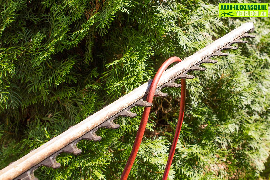 Elektroheckenschere-mit-kabel-duchtrennen