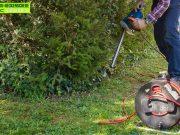 Unterschiede zwischen Akku-Heckenscheren und Benzin- / Elektro-Heckenscheren