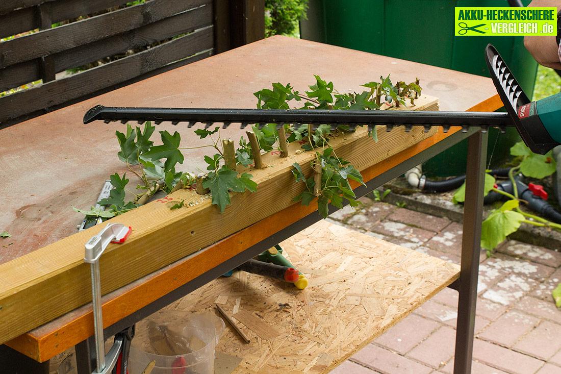 bosch ahs 54 20 li akku bosch ahs accu cordless hedge. Black Bedroom Furniture Sets. Home Design Ideas